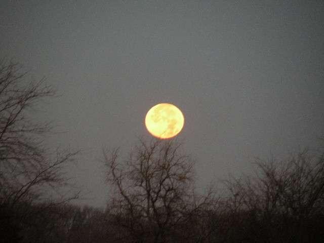 moon006.jpg