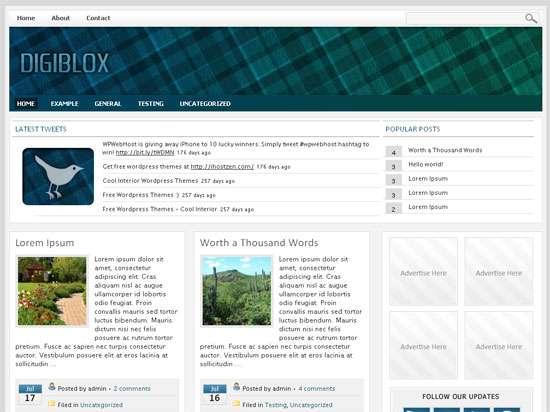 Digiblox - Wordpress Theme 2010
